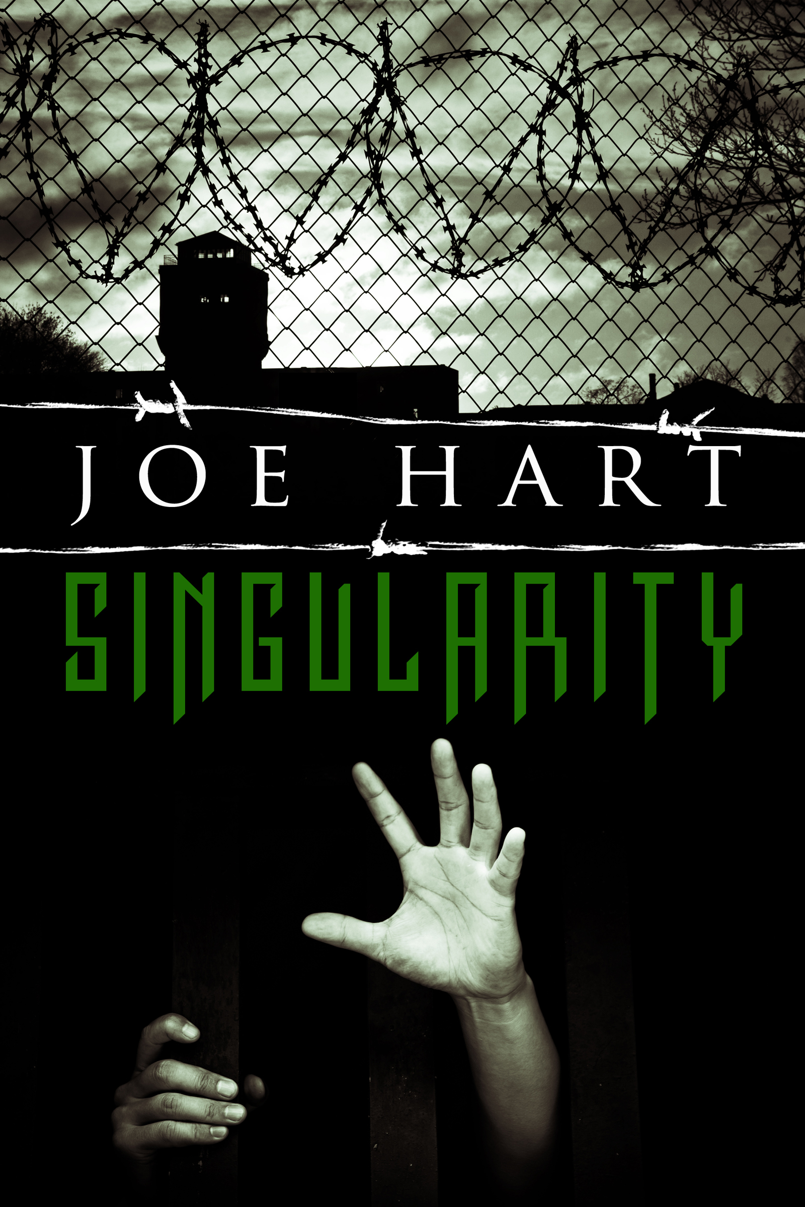 Singularity ebook