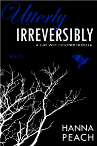IRREVERSIBLY COVER FINAL200x300