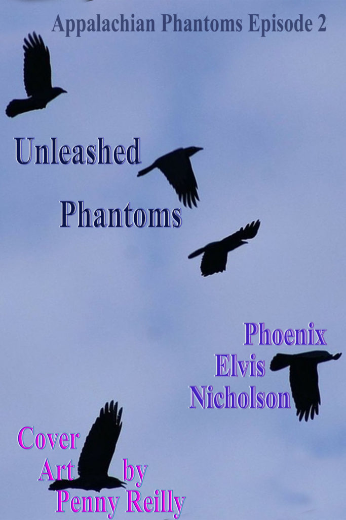 BookView with Phoenix Elvis Nicholson, author of Unleashed Phantoms